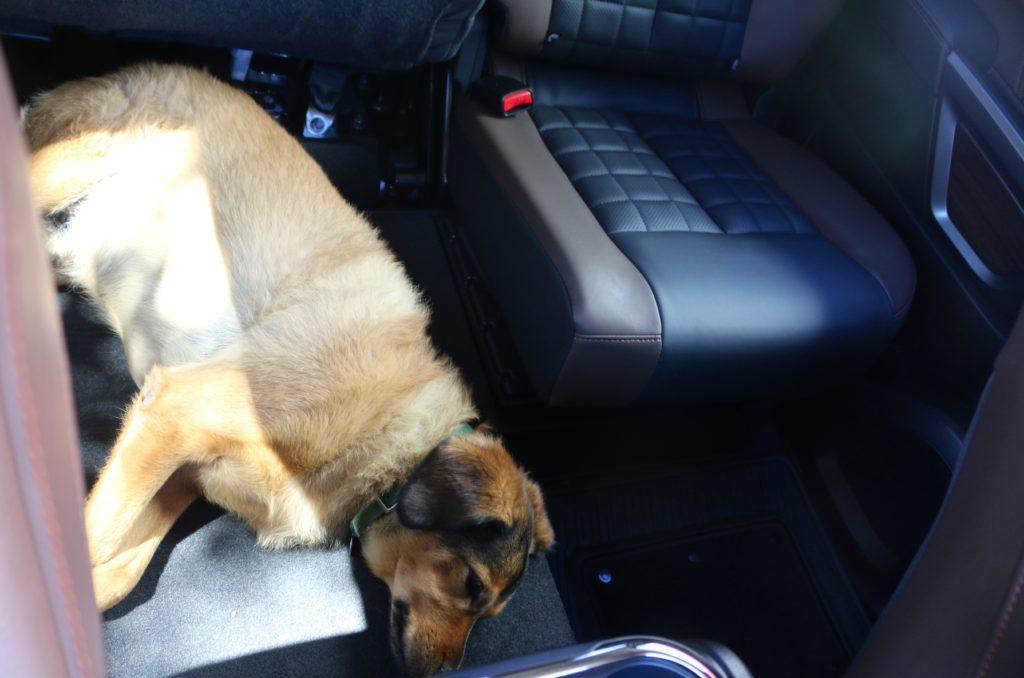 titan back seat