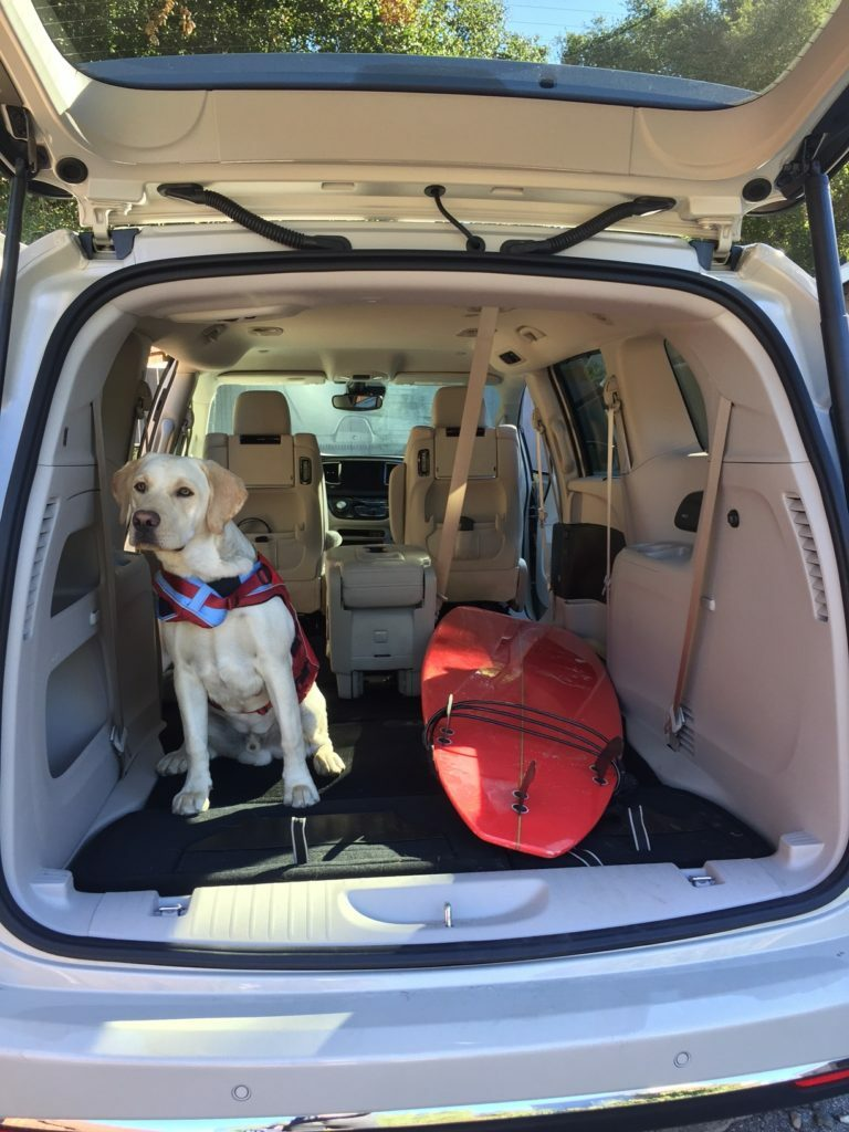 Chrysler Pacifica surf dog
