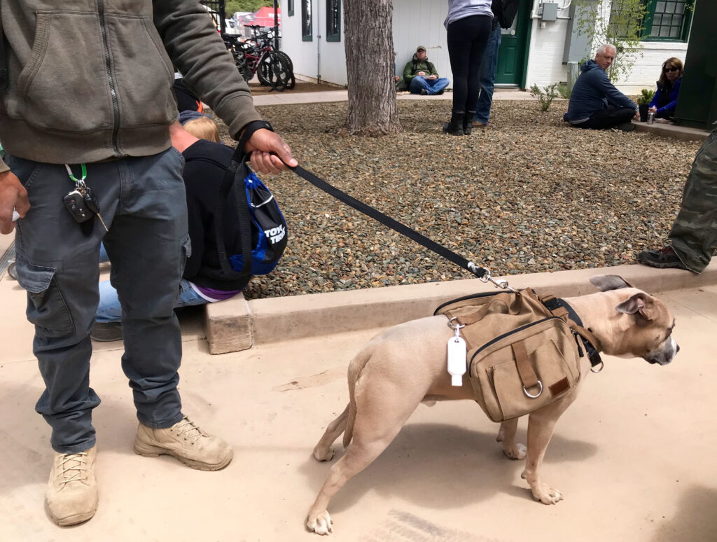 overland expo 2019 dogs